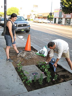 Guerilla_Gardening_in_front_of_Flying_Pigeon_LA